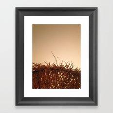 Palm umbrella Framed Art Print