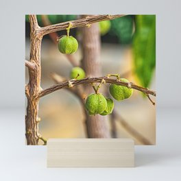 The fruit on the branch Mini Art Print