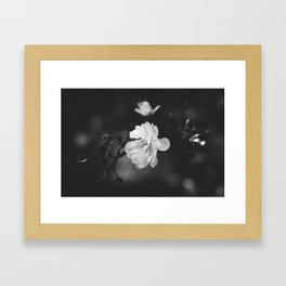 february flower Framed Art Print