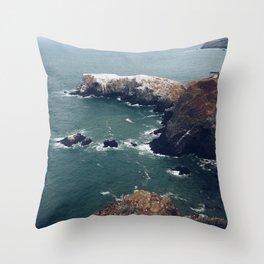Bird island 2 Throw Pillow