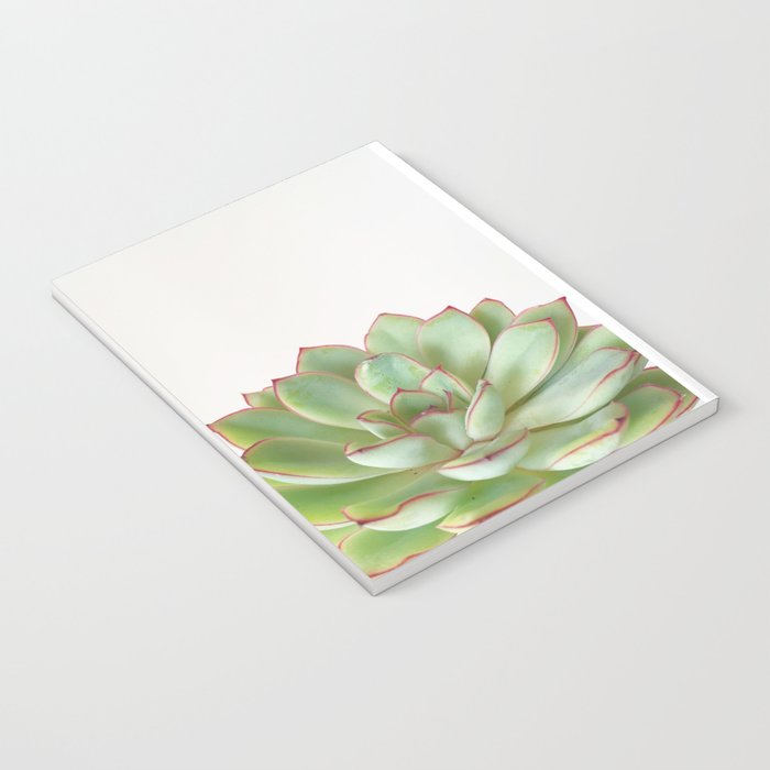 Green Succulent Notebook