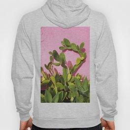 Pink Wall/Green Cactus  Hoody