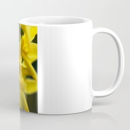 Golden Spring Coffee Mug