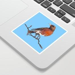 Robin Sticker