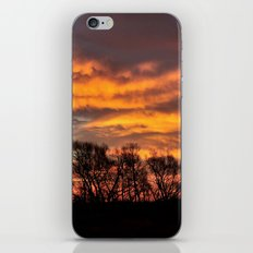 Midwest Morning iPhone & iPod Skin