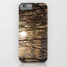 Iowa Winter Sun Slim Case iPhone 6s