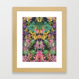 Espiritu - 200 Framed Art Print