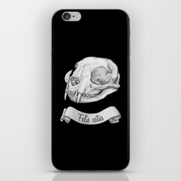 Cat skull in ink iPhone Skin