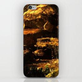 Fall Waterfall iPhone Skin