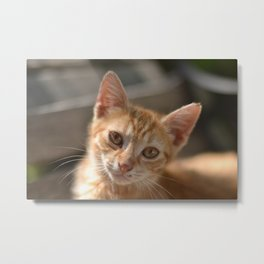 You Have Nothing To Do? Metal Print
