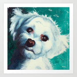 Maltese dog - Pelusa - by LiliFlore Art Print