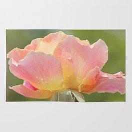 Serene Rose Rug