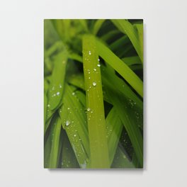 Shot with Simplicity Metal Print