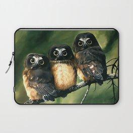 Saw Whet Owls Laptop Sleeve