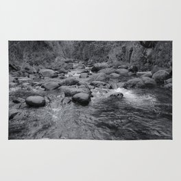 river in the forest with tree in black and white Rug