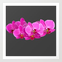 CHARCOAL GREY PURPLE PINK ORCHIDS Art Print
