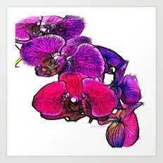 :: Orchids at Breakfast :: Art Print