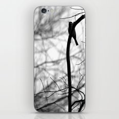 My song for you iPhone & iPod Skin