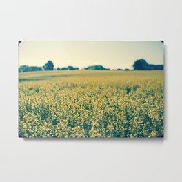 Beyond The Flowers  Metal Print