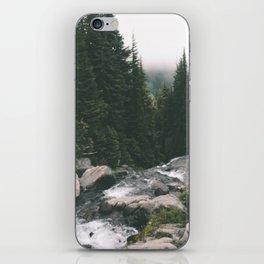 Washington iPhone Skin