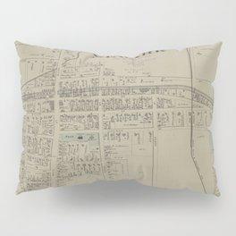 Vintage Map of Newark NY (1874) Pillow Sham