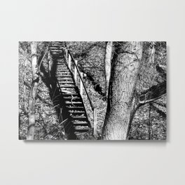 forest stairs Metal Print