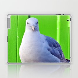 BALTIC SEAGULL Laptop & iPad Skin