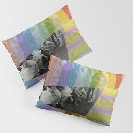 Kodachrome Reunion Pillow Sham