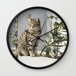 Cat & Coffee Cups Photography Print In Istanbul, Turkey Wall Clock