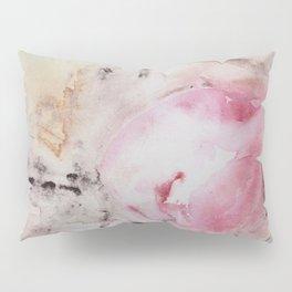 Integration 2 Pillow Sham