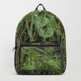 Dew Covered Coastal Plants on the Cliffs Backpack