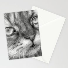 Cat Drawing Stationery Cards