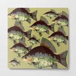 Sun Fish Metal Print