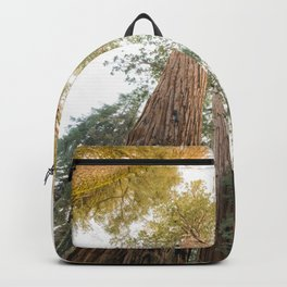 Redwood Forest Canopy Sunset Backpack