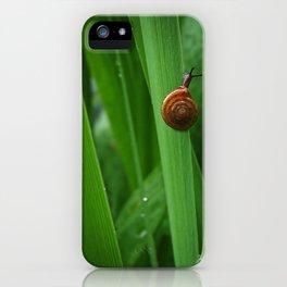 Daring Snail iPhone Case