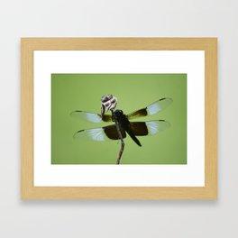 Dragons do fly!!! Framed Art Print