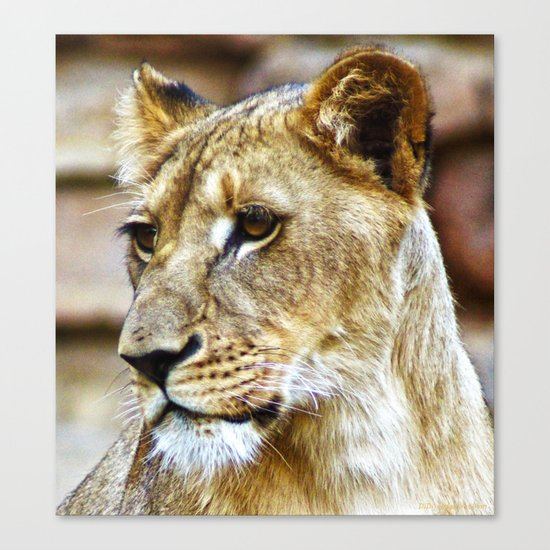 Her Highness Canvas Print
