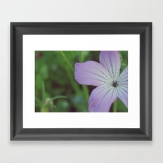 Muted Color Framed Art Print