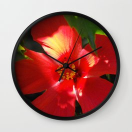 Red Hibiscus in Sunlight Wall Clock