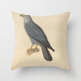 Sooty Falcon3 Throw Pillow