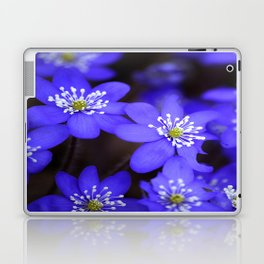First Spring Flowers in Forest Laptop & iPad Skin