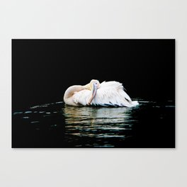 Feather Pillow Canvas Print