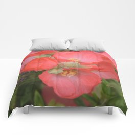 Apricot Mallow Blossoms Comforters