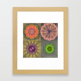 Aetiogenic Actuality Flower  ID:16165-013140-25800 Framed Art Print