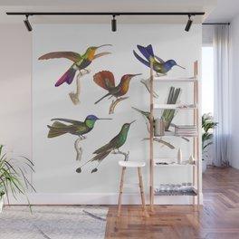 Six Colorful Hummingbirds Wall Mural