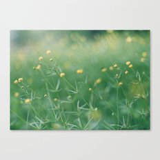 let the sunshine touch your heart Canvas Print