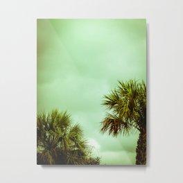 Palmetto Trees Metal Print