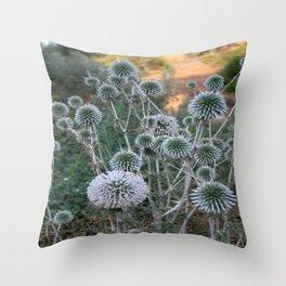 Seed Head Of Leek Flower Allium Sphaerocephalon  Throw Pillow