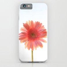 Pink Lemonade Slim Case iPhone 6s
