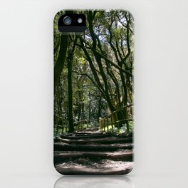 The epmty path in forest iPhone Case